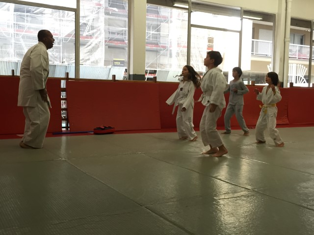 club judo paris 15